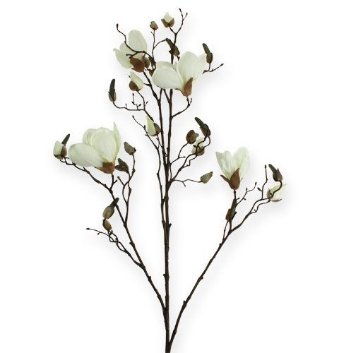 Magnolienzweig Weiß 110cm preiswert online kaufen