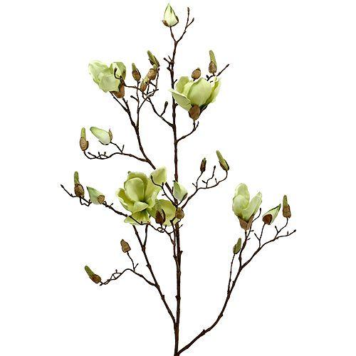 Magnolienzweig Grün L110cm