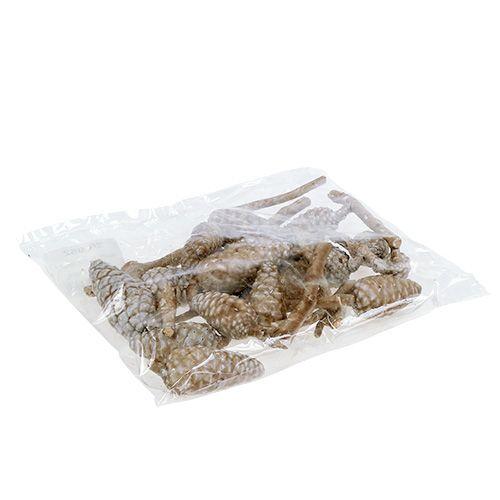 Maritimazapfen Hellbraun, gewachst 250g