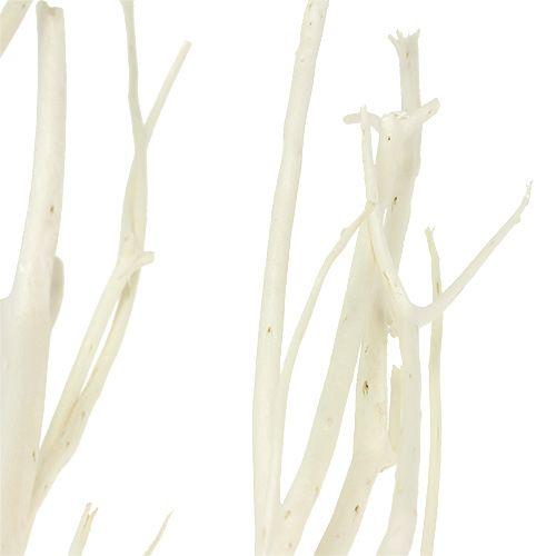 Mitsumata Zweige Weiß 34-60cm 12St