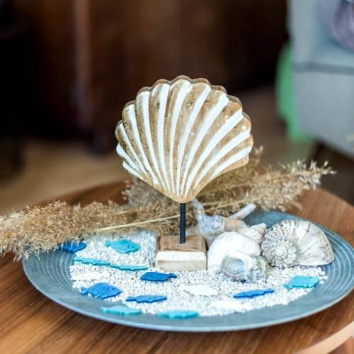Muschel mit Sockel Holz Weiß, Natur 20×14cm Maritime Deko fürs Wohnzimmer