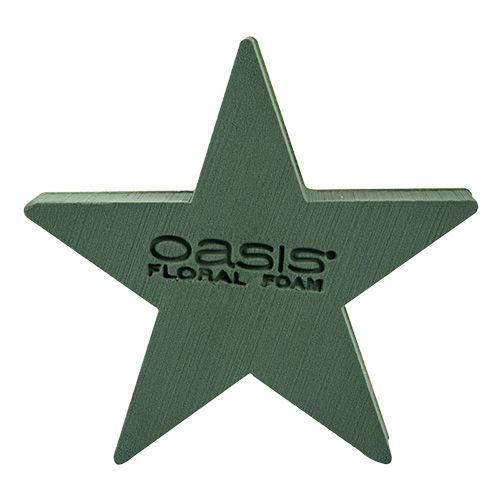 OASIS® BIOLINE® Steckschaum Stern 25cm x 25cm x 4,5cm