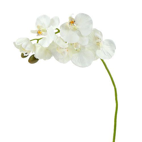 Orchidee Weiß künstlich L73cm 4St