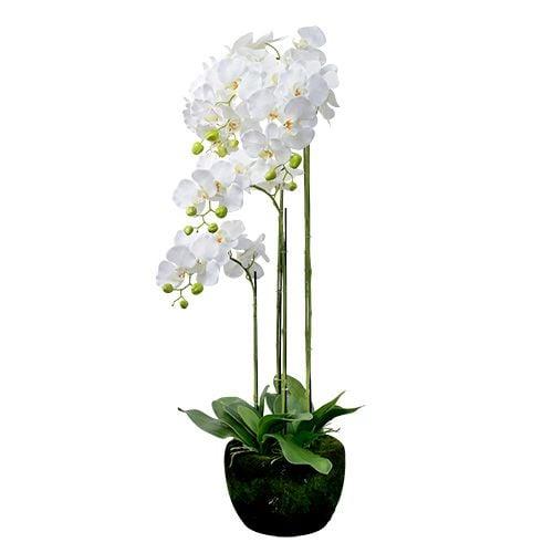 orchidee wei mit erdball 110cm preiswert online kaufen. Black Bedroom Furniture Sets. Home Design Ideas