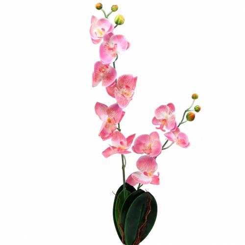 Orchidee Phalaenopsis künstlich Rosa 60cm