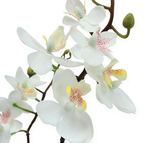 deko orchidee im topf wei 26cm preiswert online kaufen. Black Bedroom Furniture Sets. Home Design Ideas