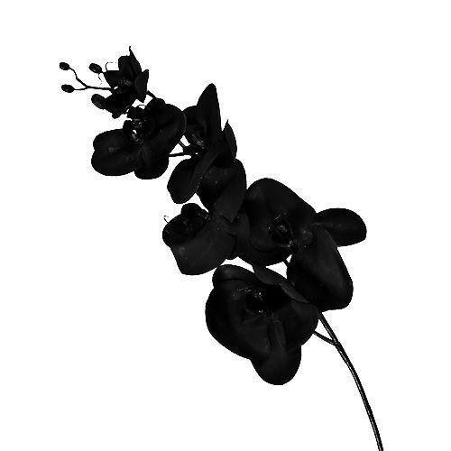 orchidee schwarz l80cm preiswert online kaufen. Black Bedroom Furniture Sets. Home Design Ideas