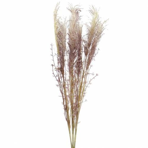 Pampasgras Crème, Violett Künstliche Trockenblumen 3St