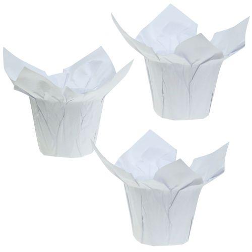 Übertöpfe aus Papier Weiß Ø12cm 12St