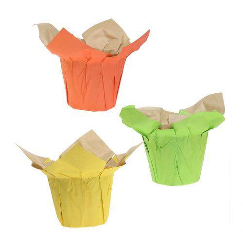 Übertöpfe aus Papier Grün, Orange, Gelb Ø8cm 12St