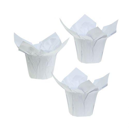 Übertöpfe aus Papier Weiß Ø8cm 12St