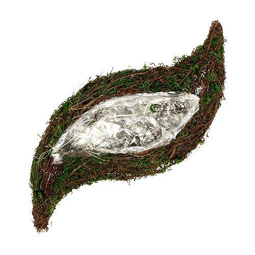 Pflanzwelle Rebe, Moos 45cm x 18cm H7cm