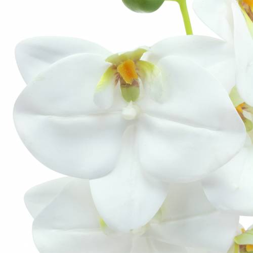 Künstlicher Orchideenzweig Phaelaenopsis Weiß H49cm