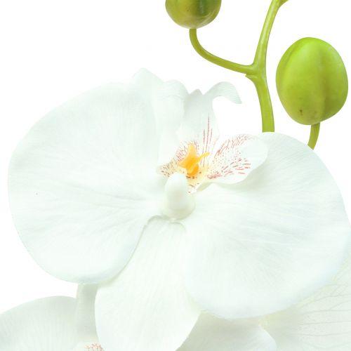 Orchidee Phalaenopsis künstlich Weiß 80cm