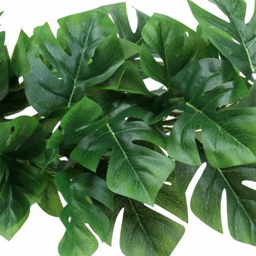 Philodendron Hänger Grün 85cm