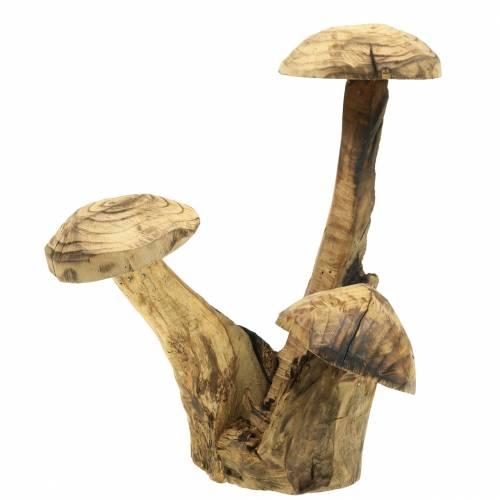 Pilze Pflaumenholz H27cm