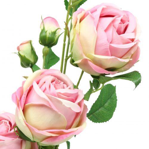 Rosenzweig Rosa 100cm