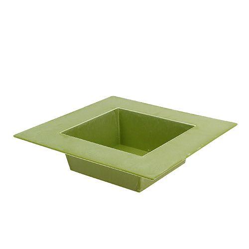 Schale eckig Hellgrün 20cm x 20cm, 1St
