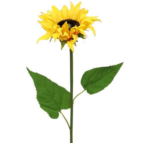 Langstielige Sonnenblume Gelb 53cm