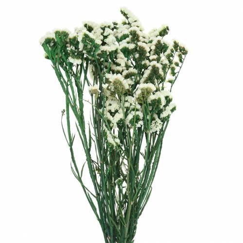Trockenblumen-Bund Strandflieder Weiß 40–55cm 120g