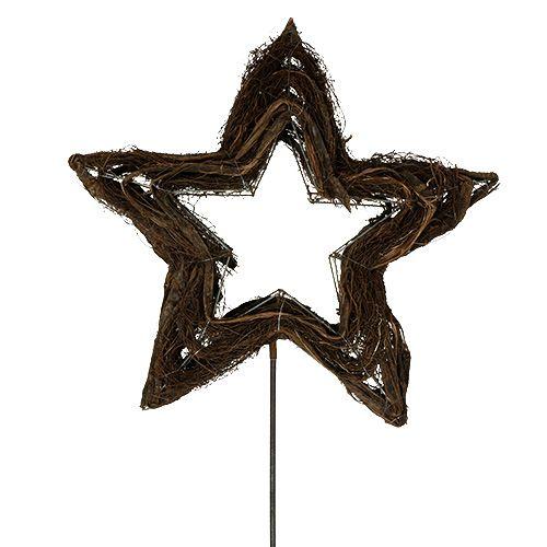 Stern aus Rebe Natur 65cm am Stab L160cm