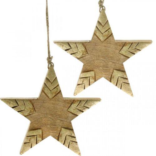 Stern Mangoholz Natur, Golden Holzstern groß zum Hängen 25cm 2St