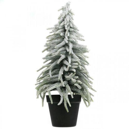 Winter-Tanne im Topf, Weihnachtsdeko, Tannenbaum mit Schnee H45cm