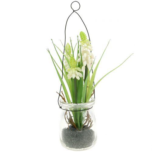 Traubenhyazinthe Weiß im Glas zum Hängen H22cm