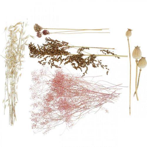 Trockenblumen Box Weiß-Rosa Mix Trockenfloristik Set