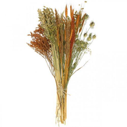 Trockenblumen DIY Set für Trockenstrauß Orange 60cm