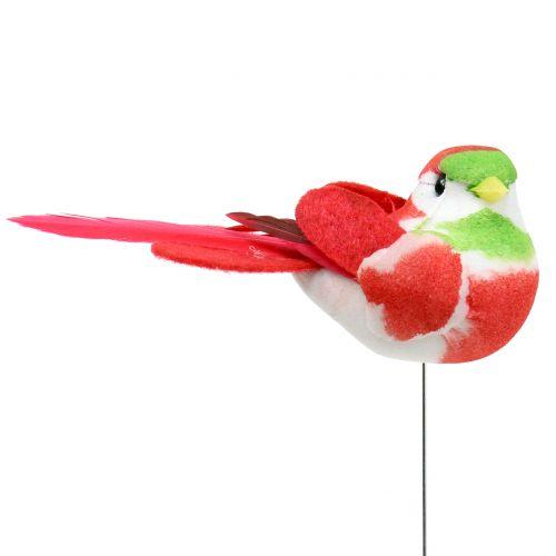 Vögel am Draht bunt 8cm 12St