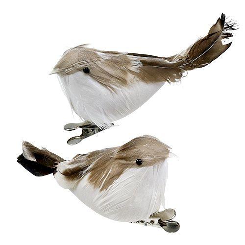 Vogel auf Clip mit Federn natur braun