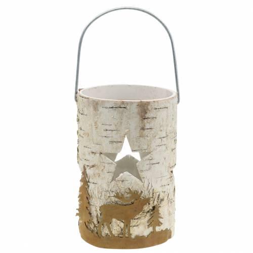 Winterdeko Windlicht Birke/Glas Ø11,5cm H17cm