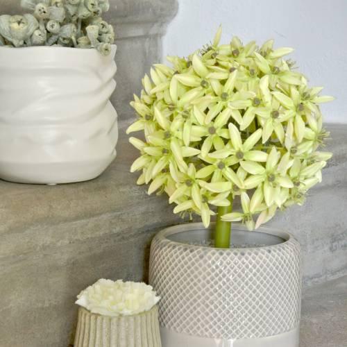 Zierlauch Allium, Seidenblume, künstlicher Kugellauch Grün Ø20cm L72cm