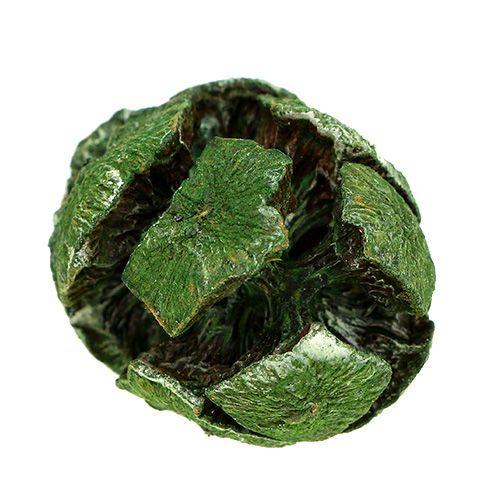Zypressen Zapfen 3cm Grün 500g
