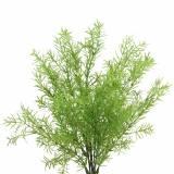Asparagus Zierspargel künstlich Grün 46cm