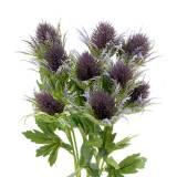 Distel-Zweig künstlich Blau-Violett 68cm 3St