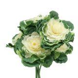 Künstlicher Zierkohl Weiß, Grün 25cm 6St