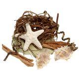 Muschel-Seestern-Mix zum Basteln 150g