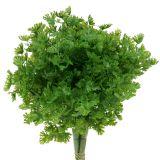 Petersilie künstlich Grün 26cm 3St