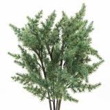 Wacholderzweig künstlich Grün 36cm 4St