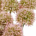Kunstblume Allium Rosa 38cm Künstlicher Zierlauch Seidenblume im Bund 12St