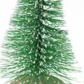 Deko-Tannenbaum Grün beschneit 10cm 6St