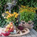 Drahtkorb Shabby Chic Drahtgitterkorb Garten Deko Ø37/26cm 2er-Set