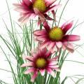 Gras mit Echinacea künstlich im Topf Pink 44cm