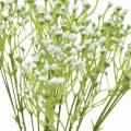 Gypsophila Schleierkraut künstlich im Bund Weiß 46cm 5St