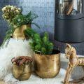 Pflanzkübel Antik Look Blumentopf mit Griffen Metall H17/19,5/26cm 3er-Set