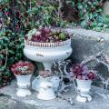 Pflanzpokal Kelch Antik Creme Ø20cm H20cm 1St
