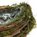 Pflanzwelle aus Reben und Moos 45cm x 18cm