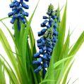 Traubenhyazinthe Blau L36,5cm